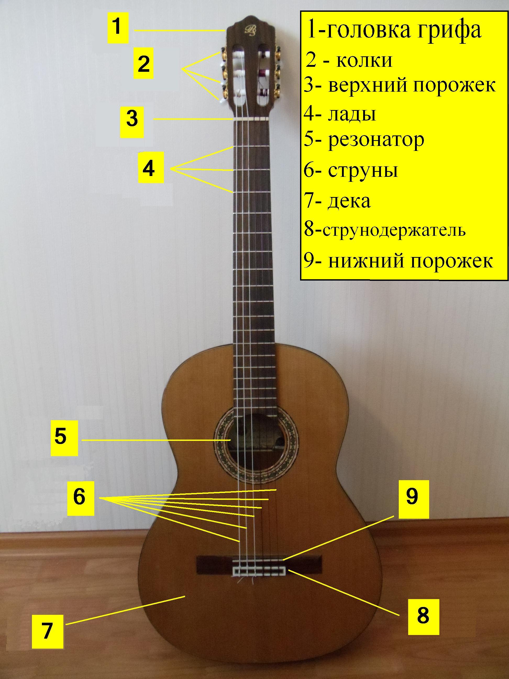 Строение гитары